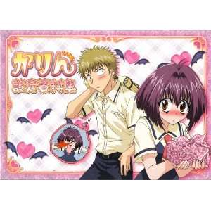 Karin (Chibi Vampire) Anime Character Design Sketch Book