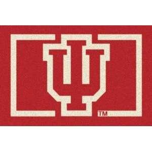 Indiana Hoosiers IU 33 x 45 Team Door Mat: Sports