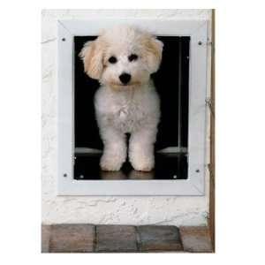 Plexidor® Wall Mount Pet Door for Small Dogs & Cats