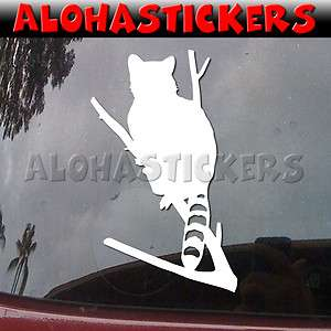 RACCOON Coon Hunting Car Truck Boat Laptop Vinyl Decal Window Sticker