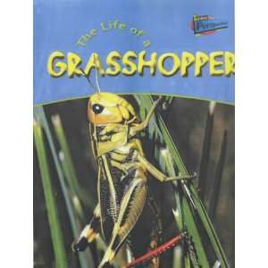 Raintree Perspectives: Life Cycles   the Life of a Grasshopper