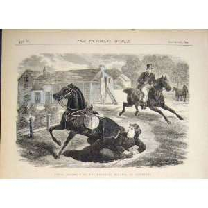 Baroness Berners Leicester Fatal Accident Print 1874: Home & Kitchen