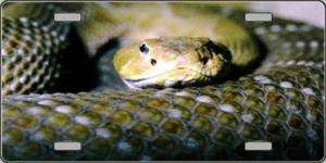 RATTLESNAKE, RATTLE SNAKE, LICENSE PLATE, AUTO TAG
