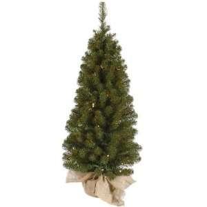 Felton Pine Tree