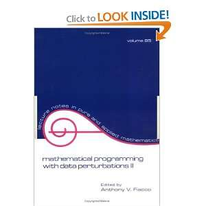 Mathematical Programming with Data Perturbations II