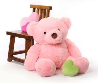 Chubby 38 Pink Teddy Bear