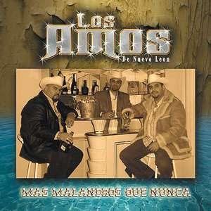 Mas Malandros Que Nunca, Los Amos De Nuevo Leon Latin