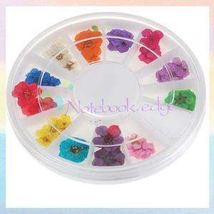 12 Colors Dried Flower Nail Art Tip Decoration Dish Gel