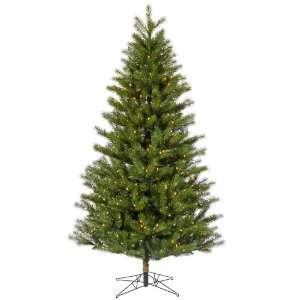 9 X 61 Augusta Pine Dura Lit 650 Clear Lights