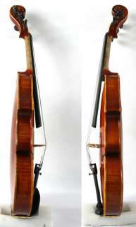 Strings Violin BAROQUE The Testore #0523 Maestro