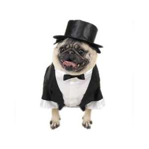 Canine Tux with Tails and Top Hat Dog Tuxedo X Large Pet Supplies