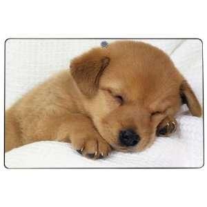Eee Pad Transformer TF101 Decal Skin Sticker   Animal Sleeping Puppy